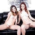 Karlie Montana licking Shyla Jennings  - free porn