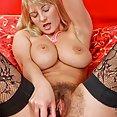 Very Hairy MILF Vanessa Sweets - image